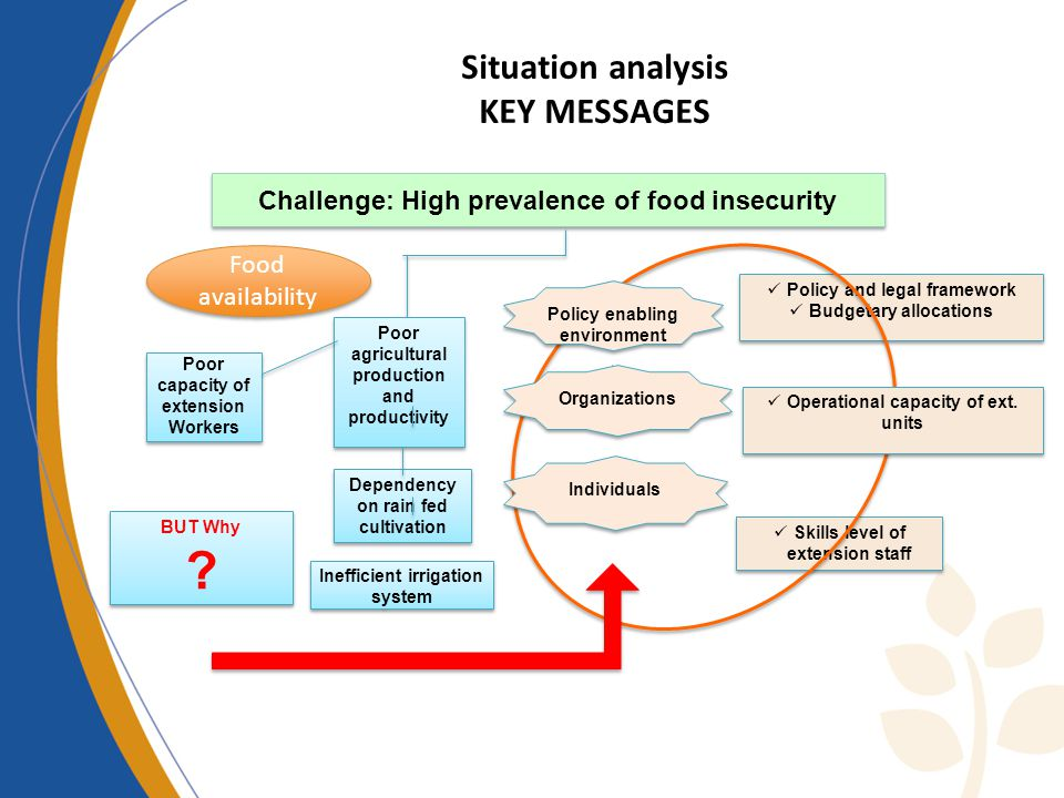Challenge: High prevalence of food insecurity Poor capacity of extension Workers Poor capacity of extension Workers Policy and legal framework Budgetary allocations Policy and legal framework Budgetary allocations Poor agricultural production and productivity Skills level of extension staff Dependency on rain fed cultivation Inefficient irrigation system Policy enabling environment Organizations Individuals Operational capacity of ext.