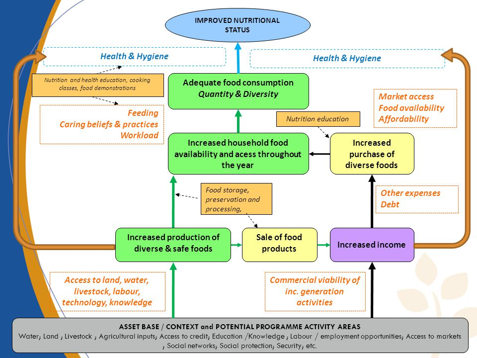 Adequate food consumption Quantity & Diversity Increased purchase of diverse foods Increased income Sale of food products Increased household food availability and acess throughout the year IMPROVED NUTRITIONAL STATUS ASSET BASE / CONTEXT and POTENTIAL PROGRAMME ACTIVITY AREAS Water; Land ; Livestock ; Agricultural inputs; Access to credit; Education /Knowledge ; Labour / employment opportunities; Access to markets ; Social networks; Social protection; Security; etc.