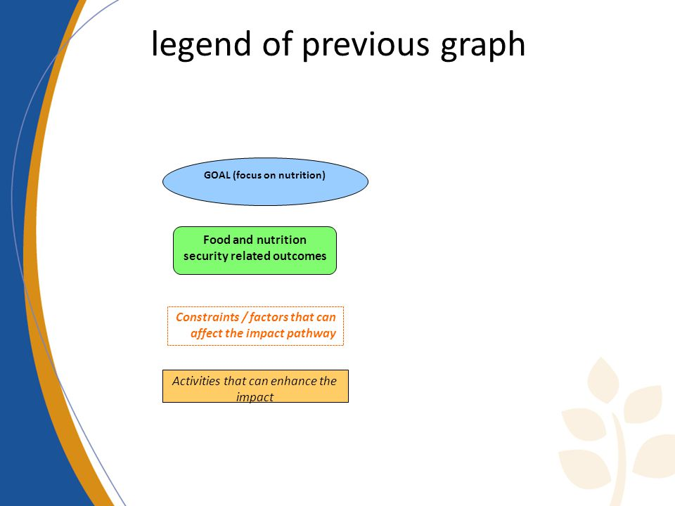 legend of previous graph Food and nutrition security related outcomes GOAL (focus on nutrition) Constraints / factors that can affect the impact pathway Activities that can enhance the impact