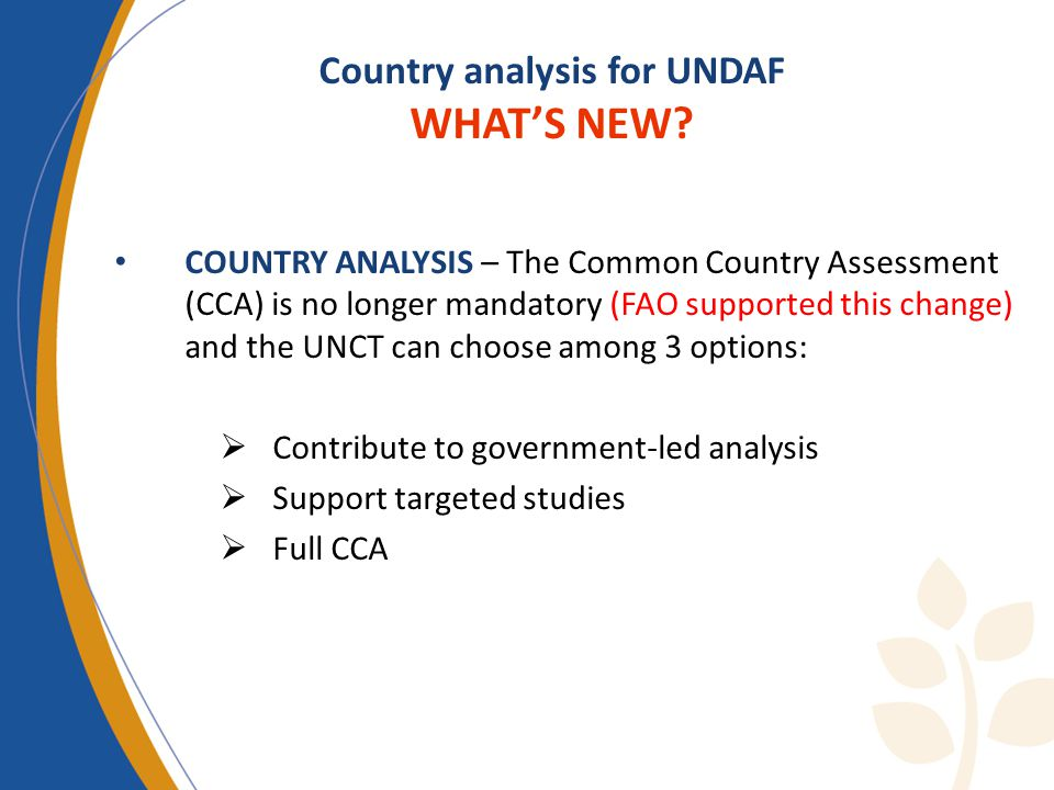 Country analysis for UNDAF WHATS NEW.