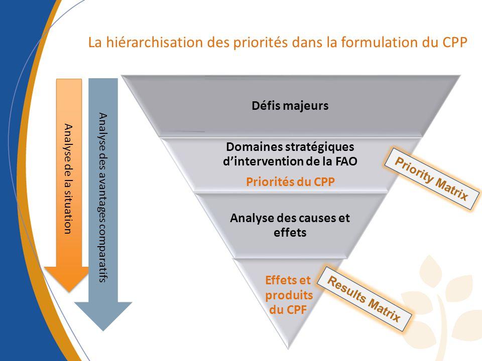 Défis majeurs Domaines stratégiques dintervention de la FAO Priorités du CPP Analyse des causes et effets Effets et produits du CPF Analyse de la situation Analyse des avantages comparatifs La hiérarchisation des priorités dans la formulation du CPP Priority Matrix Results Matrix