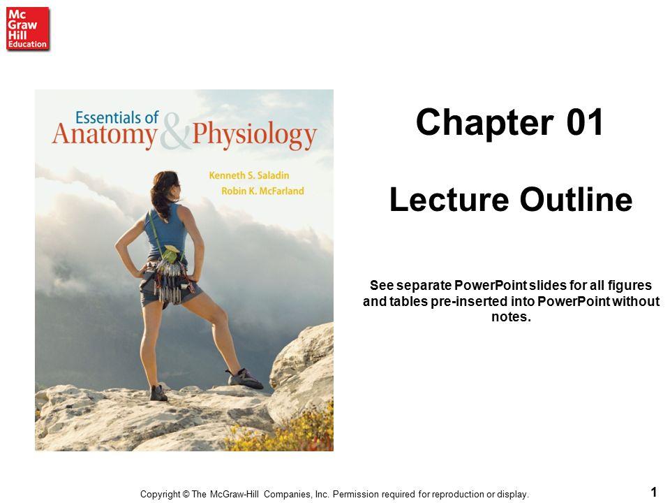 Ungewöhnlich Kenneth Saladin Anatomy And Physiology Zeitgenössisch ...