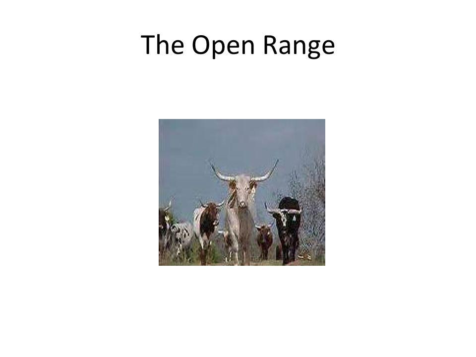 The Open Range