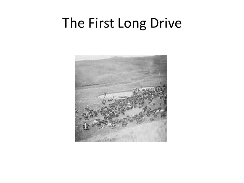 The First Long Drive