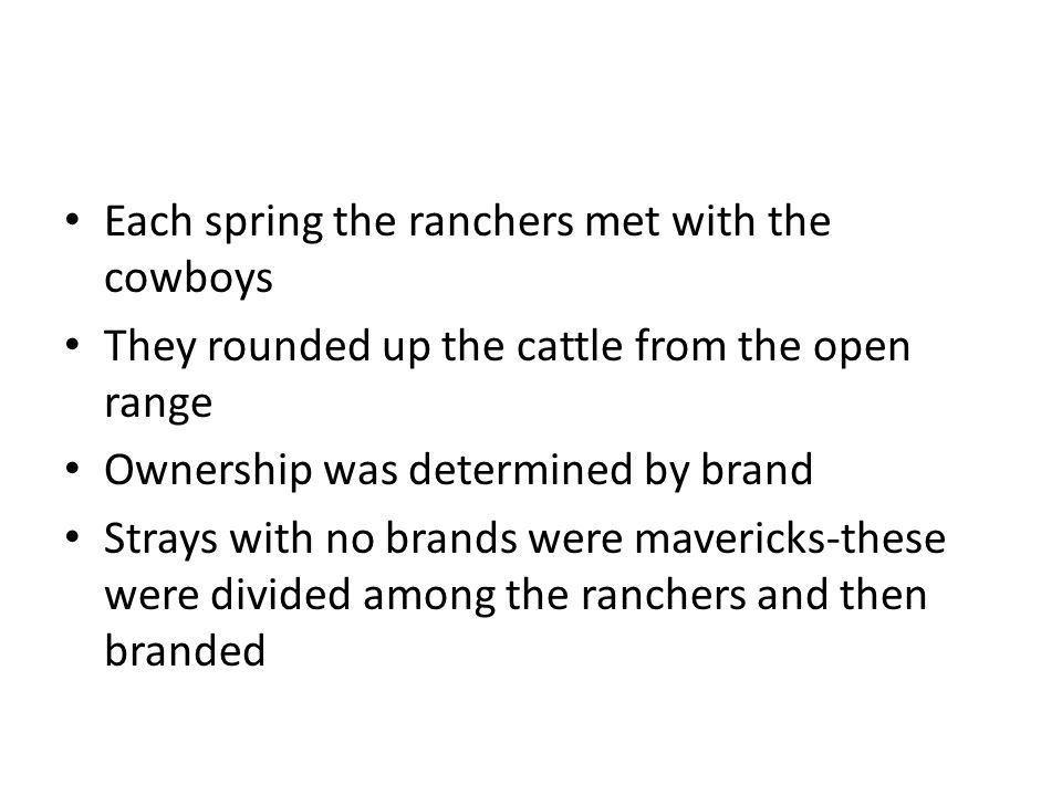 Each spring the ranchers met with the cowboys They rounded up the cattle from the open range Ownership was determined by brand Strays with no brands were mavericks-these were divided among the ranchers and then branded
