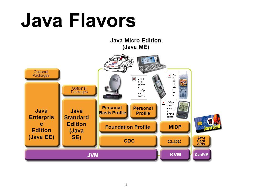 Introduction to java web programming gregg sporar ppt download 4 4 baditri Gallery