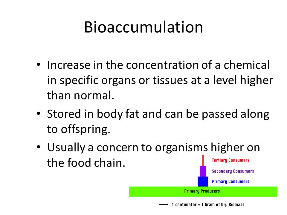 Bioaccumulation Increase in the concentration of a chemical in specific organs or tissues at a level higher than normal.