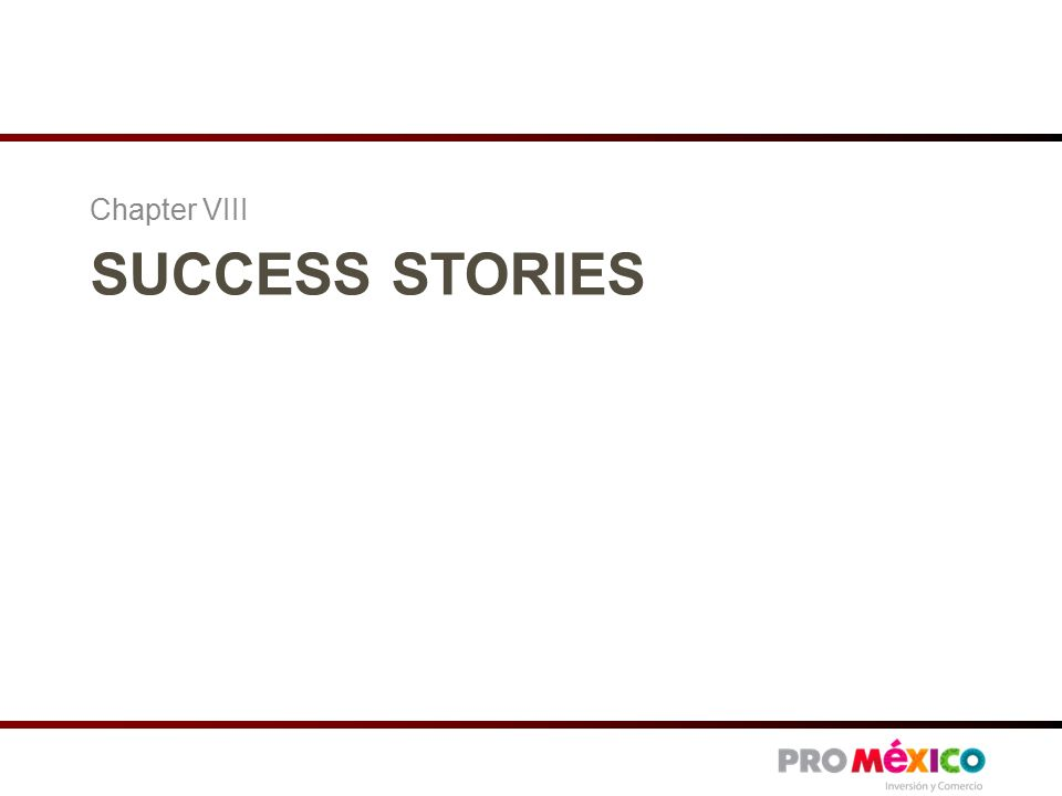 SUCCESS STORIES Chapter VIII