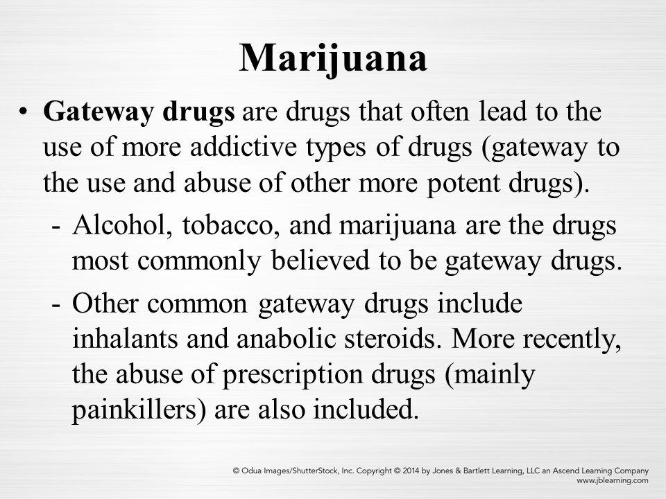 Marijuana Chapter 13 What Is Marijuana Marijuana Is A Hemp Plant