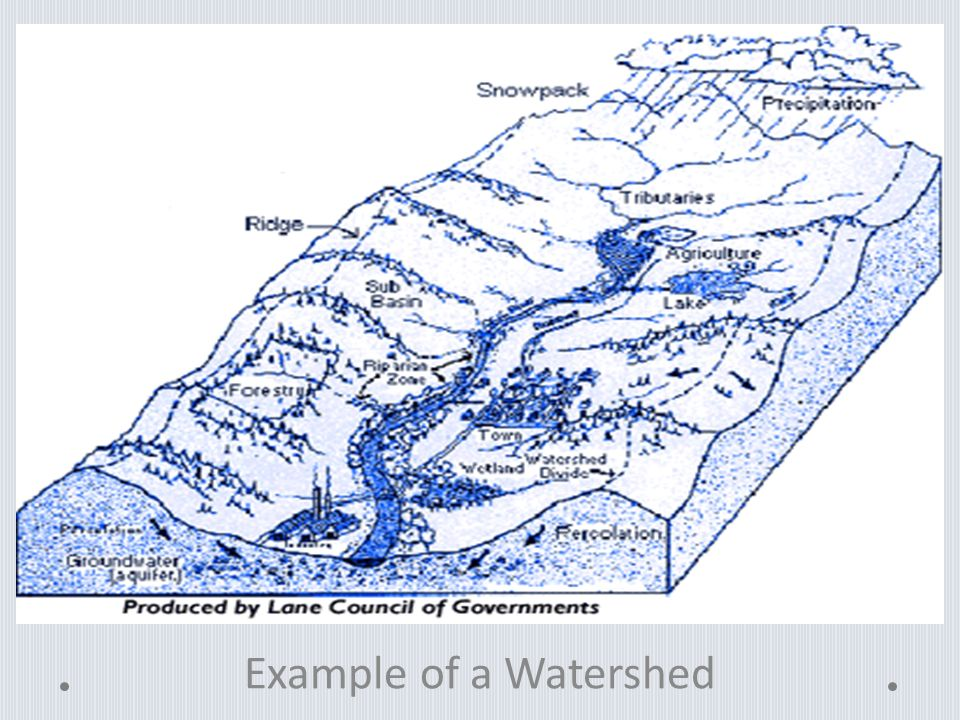 Example of a Watershed