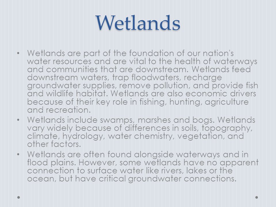 Wetlands Wetlands are part of the foundation of our nation s water resources and are vital to the health of waterways and communities that are downstream.