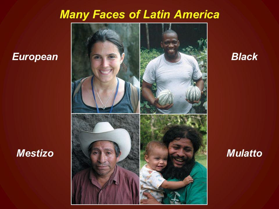 Mulattoes in latin america