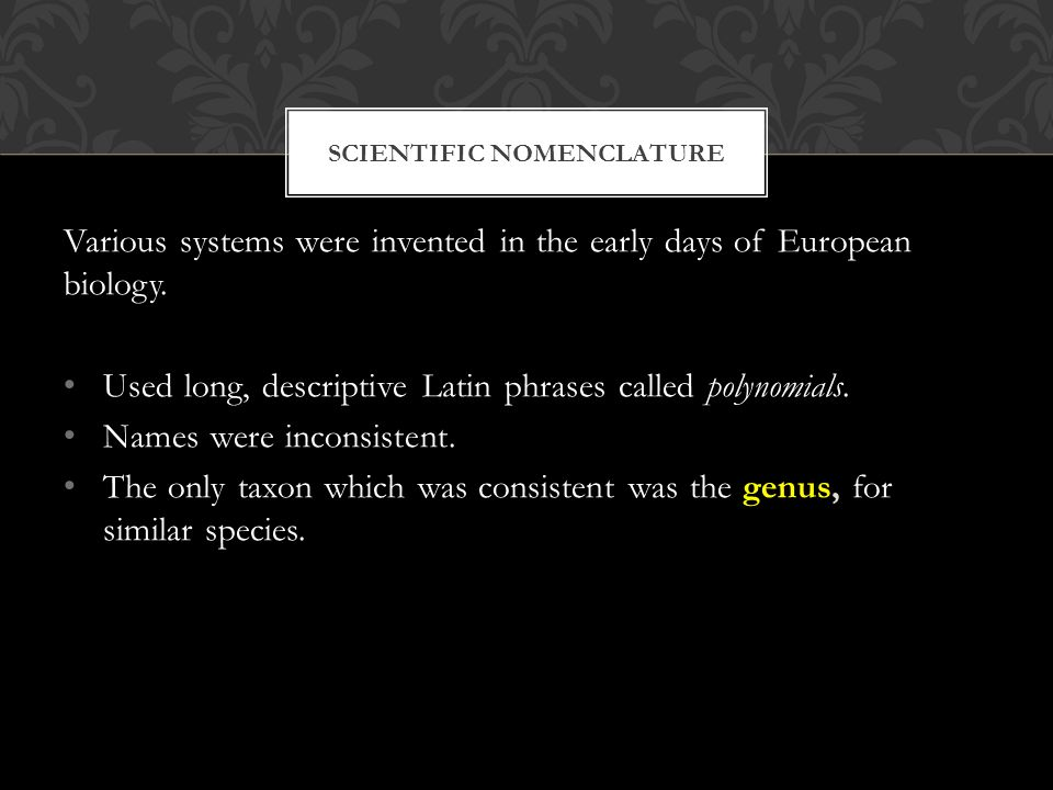 SCIENTIFIC NOMENCLATURE Various systems were invented in the early days of European biology.