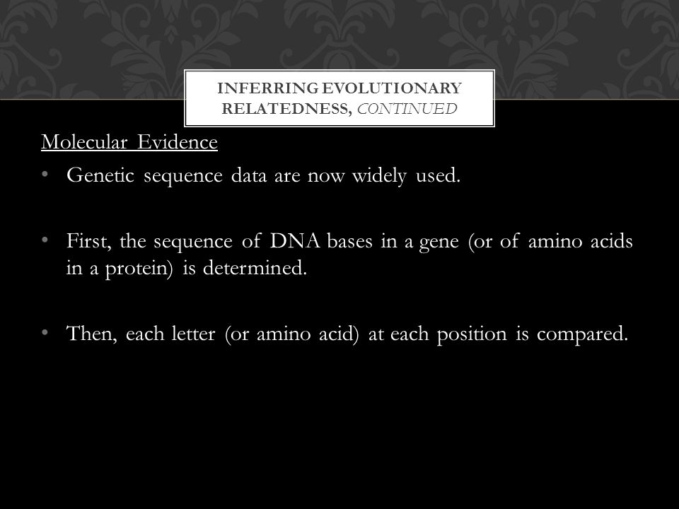 INFERRING EVOLUTIONARY RELATEDNESS, CONTINUED Molecular Evidence Genetic sequence data are now widely used.