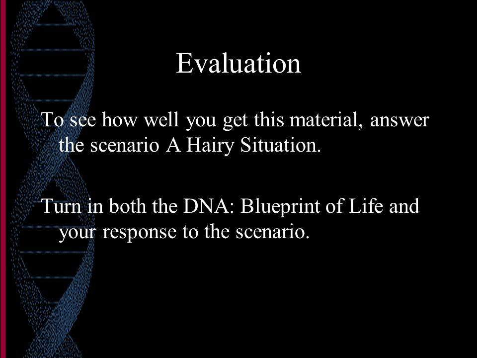 The basics of dna dna deoxyribose sugar phosphate bonds nitrogen evaluation to see how well you get this material answer the scenario a hairy situation malvernweather Images