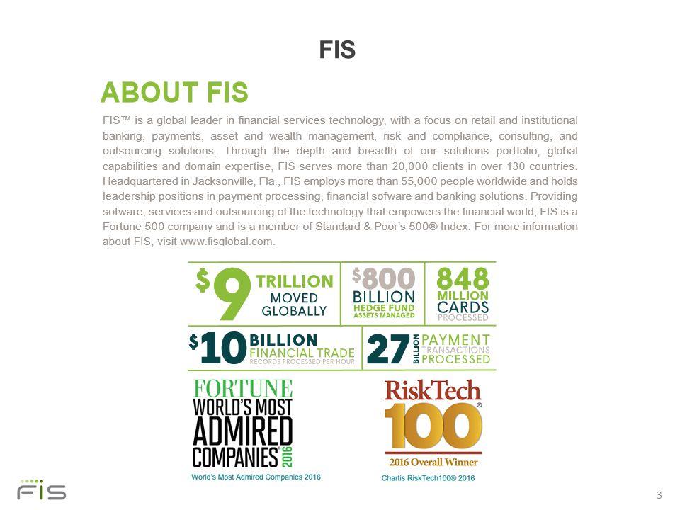 fis annual report
