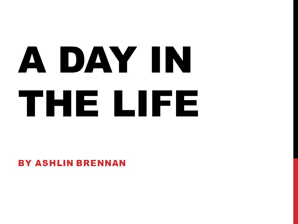 A DAY IN THE LIFE BY ASHLIN BRENNAN