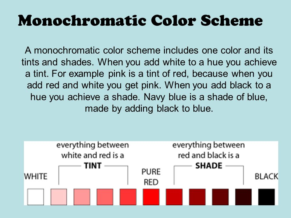 Monochromatic Color Scheme A monochromatic color scheme includes one color  and its tints and shades.
