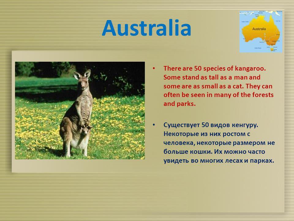 Australia There are 50 species of kangaroo.