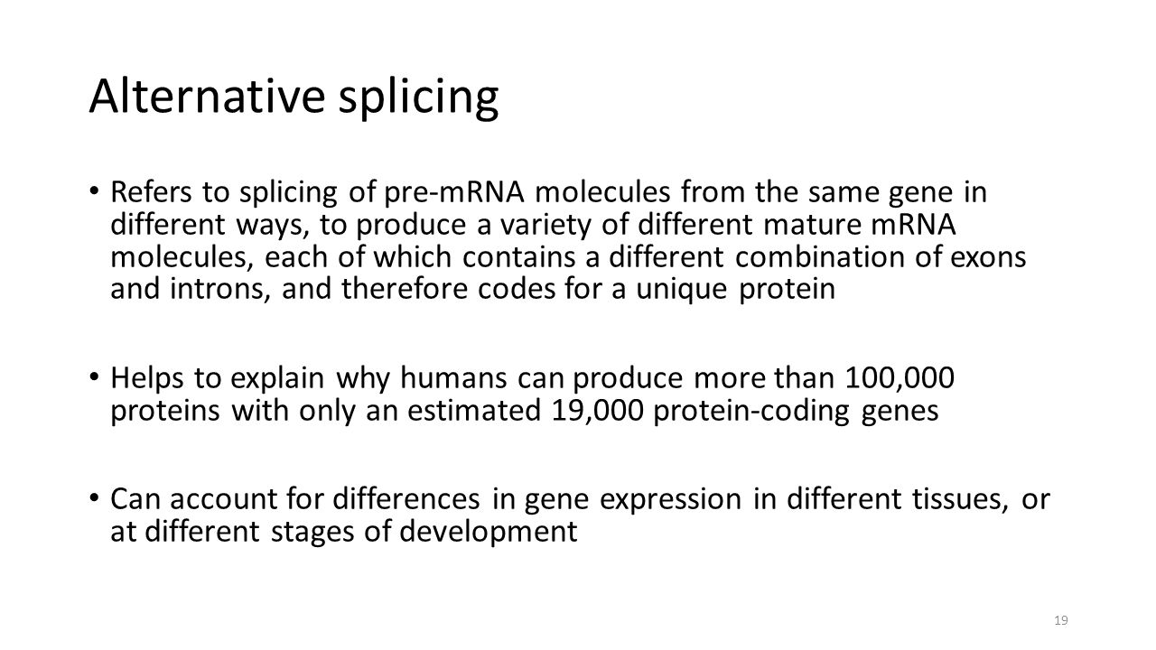 Alternative splicing Refers to splicing of pre-mRNA molecules from the same gene in different ways, to produce a variety of different mature mRNA molecules, each of which contains a different combination of exons and introns, and therefore codes for a unique protein Helps to explain why humans can produce more than 100,000 proteins with only an estimated 19,000 protein-coding genes Can account for differences in gene expression in different tissues, or at different stages of development 19