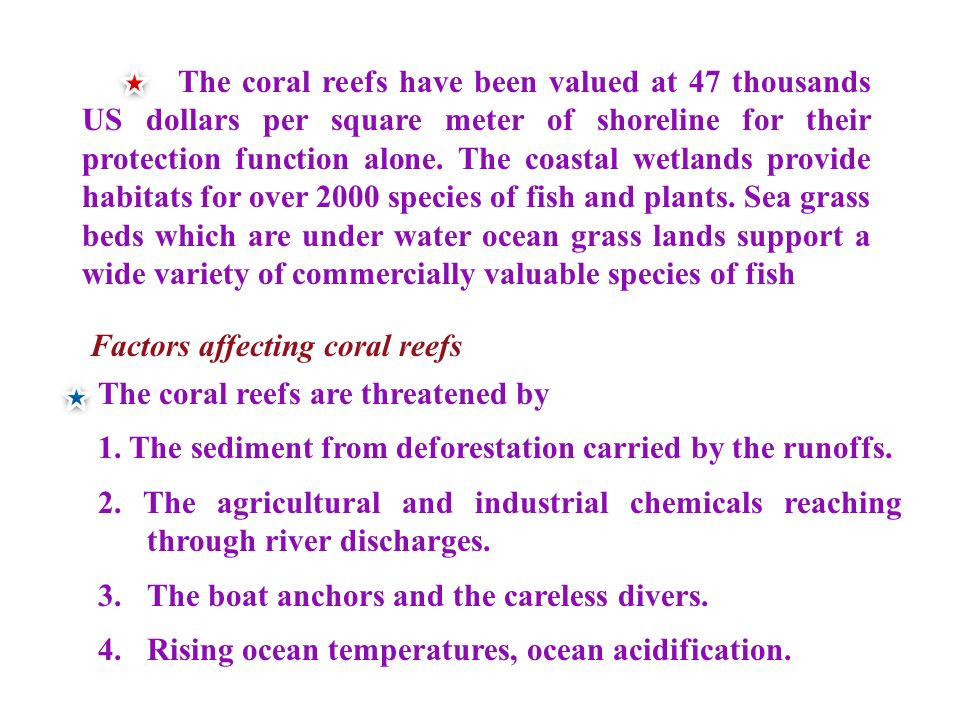 The coral reefs have been valued at 47 thousands US dollars per square meter of shoreline for their protection function alone.