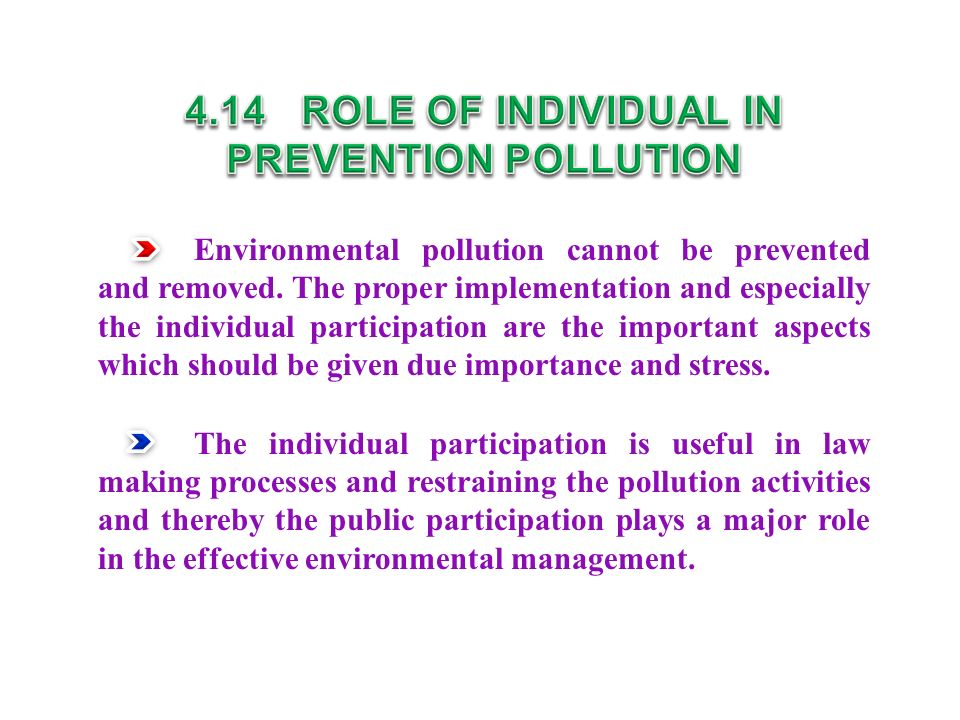 Environmental pollution cannot be prevented and removed.
