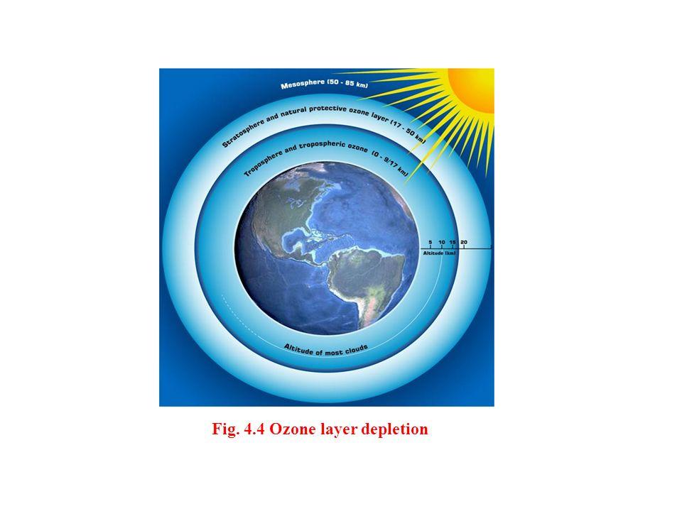 Fig. 4.4 Ozone layer depletion