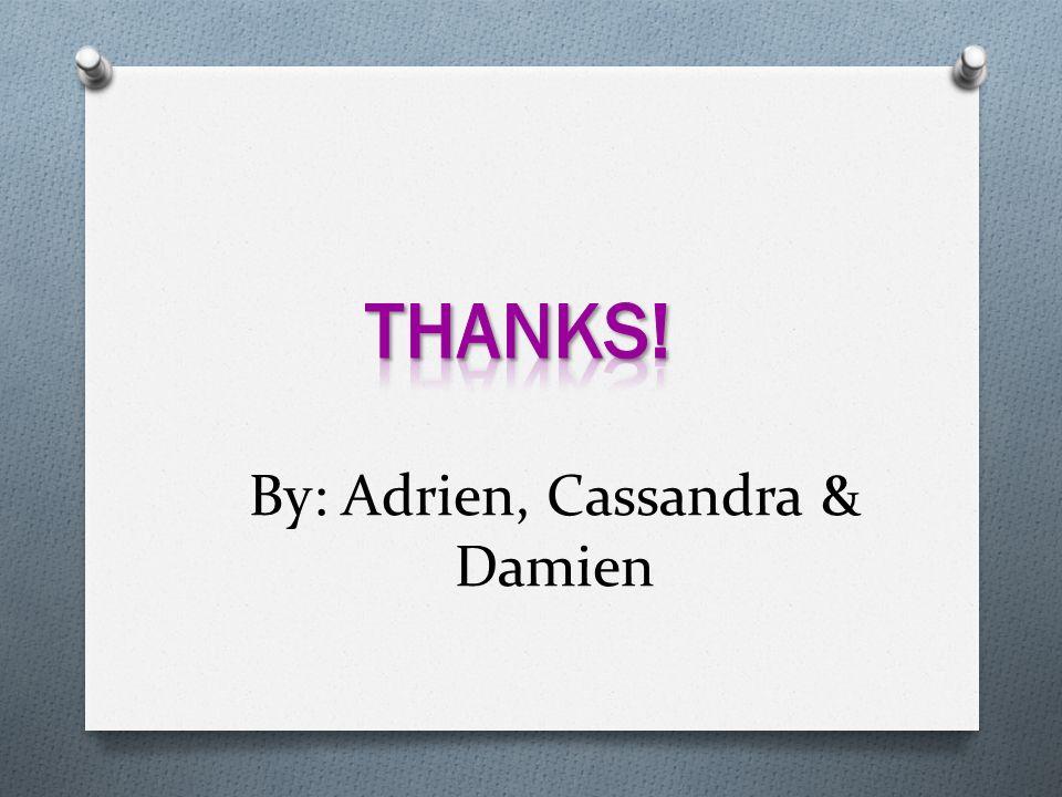 By: Adrien, Cassandra & Damien