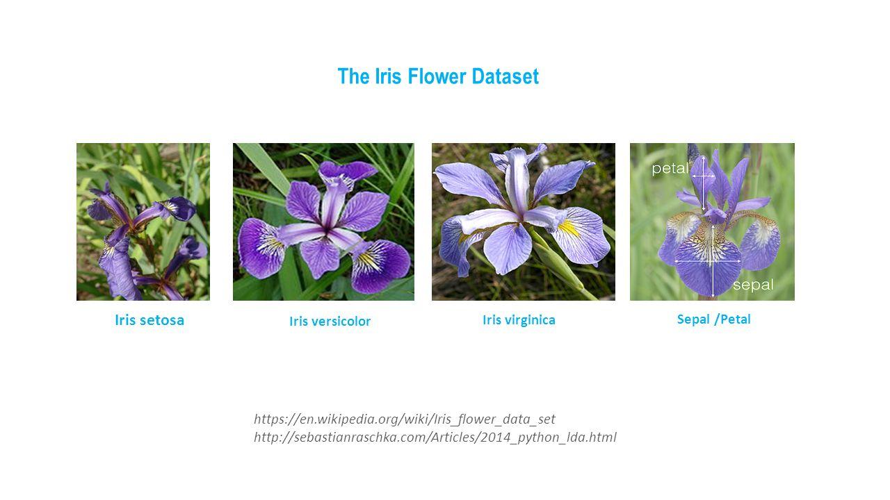 Iris flower dataset image collections flower wallpaper hd intelligence the study of computer systems 10 httpsenpediawikiirisflowerdataset httpsebastianraschkaarticles2014pythonldaml the iris flower dataset izmirmasajfo