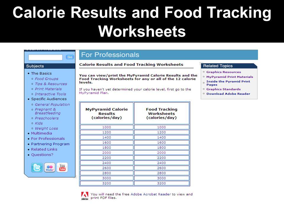worksheet. Mypyramid Worksheet. Grass Fedjp Worksheet Study Site