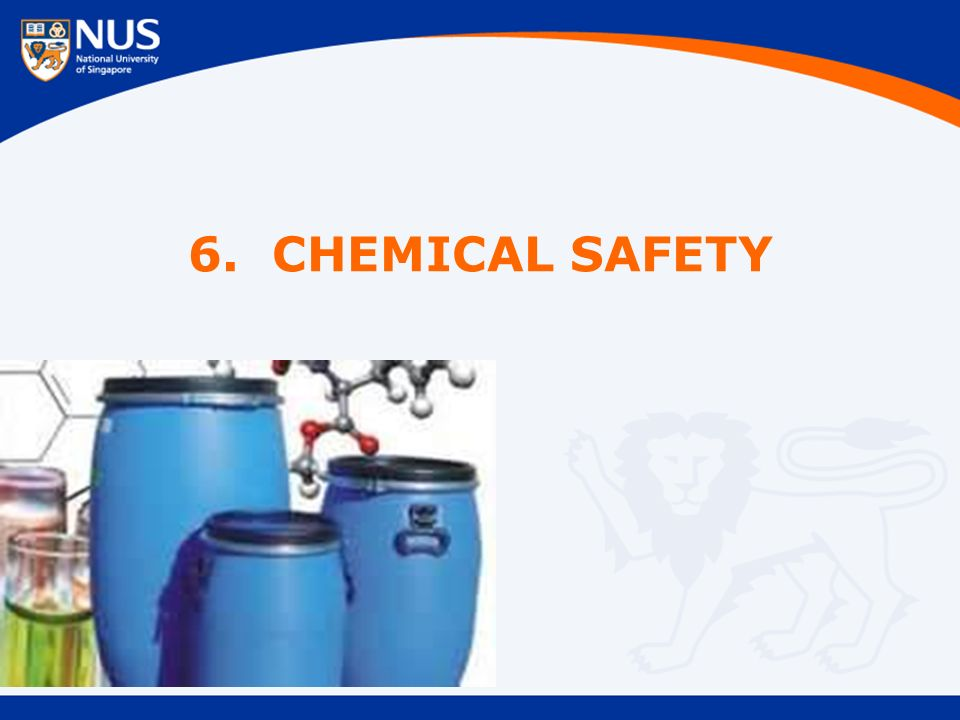 6. CHEMICAL SAFETY