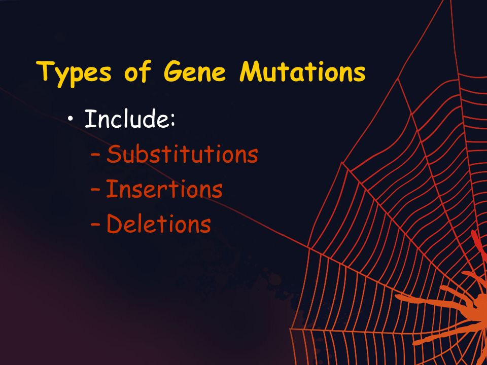 Types of Gene Mutations Include: –Substitutions –Insertions –Deletions