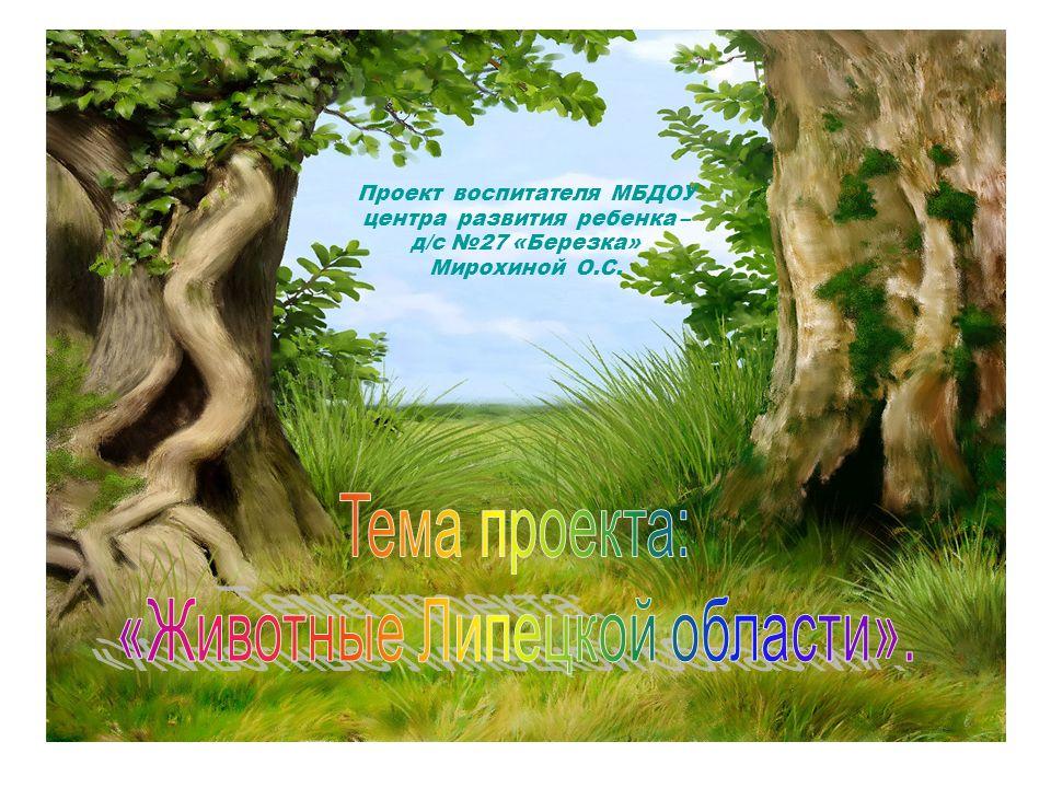 Проект воспитателя МБДОУ центра развития ребенка – д/с №27 «Березка» Мирохиной О.С.