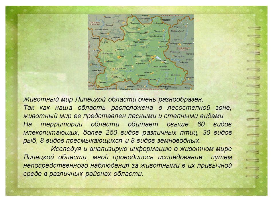 Животный мир Липецкой области очень разнообразен.