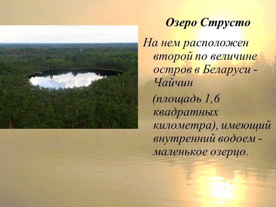 Озеро Струсто На нем расположен второй по величине остров в Беларуси - Чайчин (площадь 1,6 квадратных километра), имеющий внутренний водоем - маленькое озерцо.