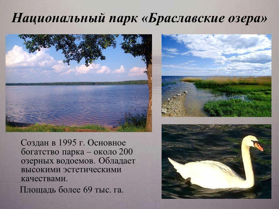 Национальный парк «Браславские озера» С оздан в 1995 г.