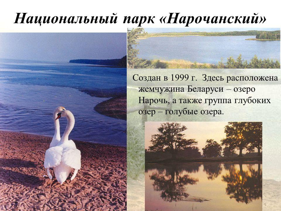 Национальный парк «Нарочанский» Создан в 1999 г.