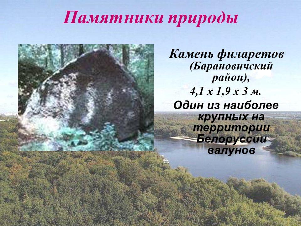 Памятники природы Камень филаретов (Барановичский район), 4,1 х 1,9 х 3 м.