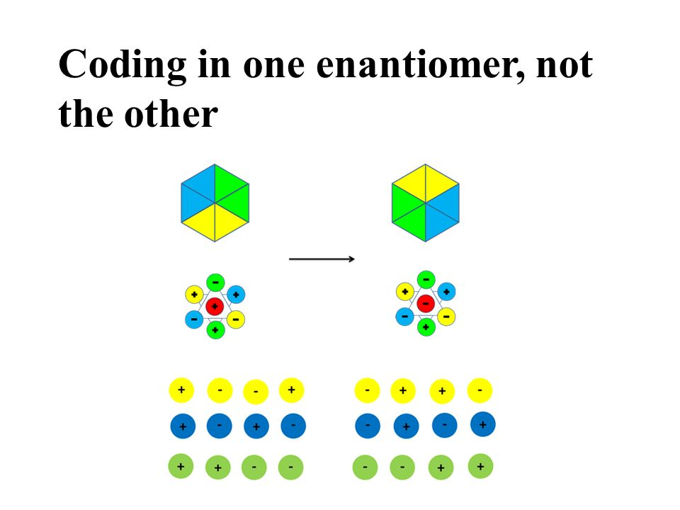 Coding in one enantiomer, not the other
