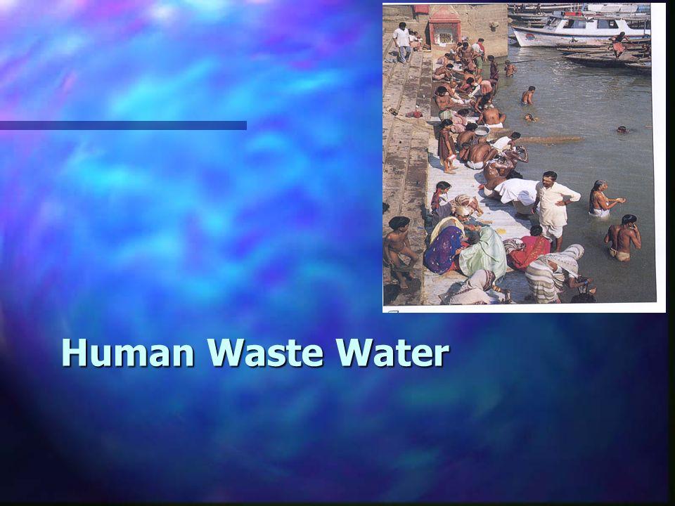 Human Waste Water