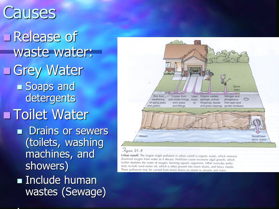 Causes Release of waste water: Release of waste water: Grey Water Grey Water Soaps and detergents Soaps and detergents Toilet Water Toilet Water Drains or sewers (toilets, washing machines, and showers) Drains or sewers (toilets, washing machines, and showers) Include human wastes (Sewage) Include human wastes (Sewage).