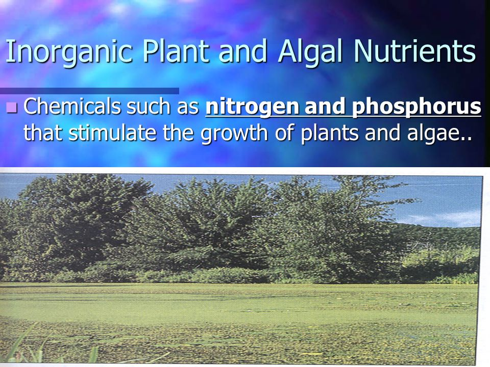 Chemicals such as nitrogen and phosphorus that stimulate the growth of plants and algae..