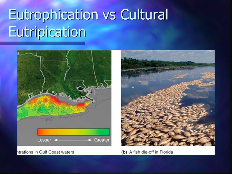 Eutrophication vs Cultural Eutripication