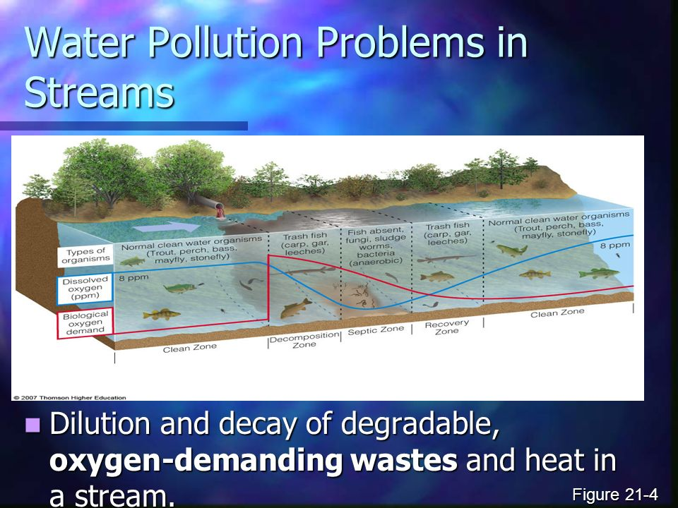 Water Pollution Problems in Streams Dilution and decay of degradable, oxygen-demanding wastes and heat in a stream.