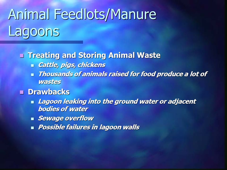 Animal Feedlots/Manure Lagoons Treating and Storing Animal Waste Treating and Storing Animal Waste Cattle, pigs, chickens Cattle, pigs, chickens Thousands of animals raised for food produce a lot of wastes Thousands of animals raised for food produce a lot of wastes Drawbacks Drawbacks Lagoon leaking into the ground water or adjacent bodies of water Lagoon leaking into the ground water or adjacent bodies of water Sewage overflow Sewage overflow Possible failures in lagoon walls Possible failures in lagoon walls