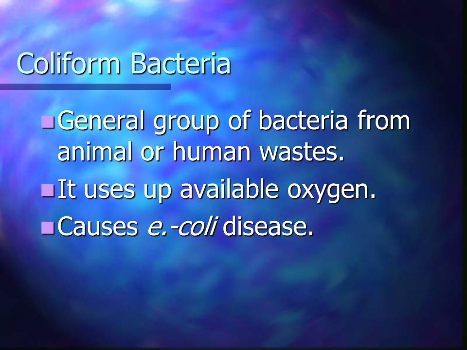 Coliform Bacteria General group of bacteria from animal or human wastes.