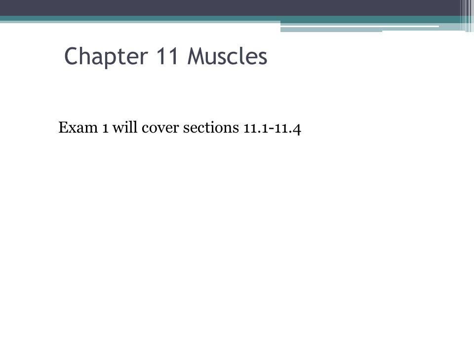 Chapter 11 Muscles Exam 1 will cover sections ppt download