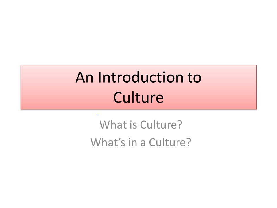 An Introduction to Culture What is Culture What's in a Culture