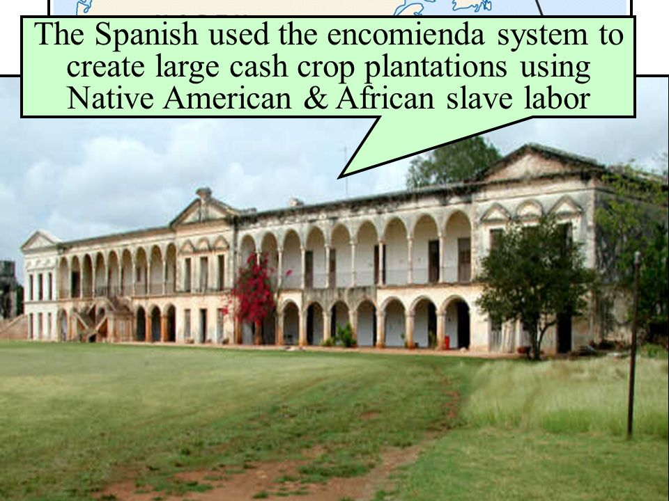 Spanish Conquests & Colonies Spanish missionaries focused heavily on converting Native Americans & establishing missions The Spanish used the encomienda system to create large cash crop plantations using Native American & African slave labor