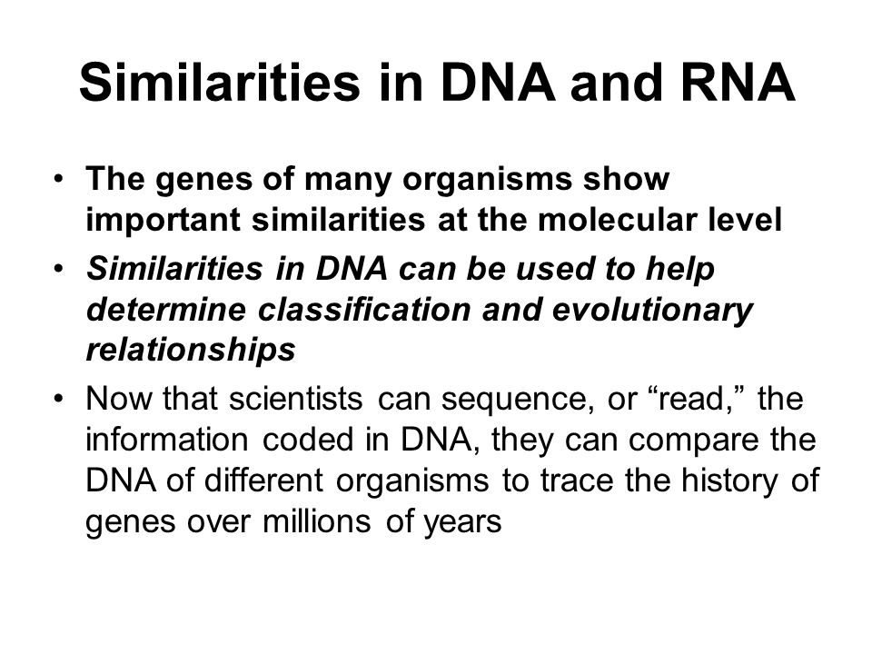 Similarities in DNA and RNA The genes of many organisms show important similarities at the molecular level Similarities in DNA can be used to help determine classification and evolutionary relationships Now that scientists can sequence, or read, the information coded in DNA, they can compare the DNA of different organisms to trace the history of genes over millions of years